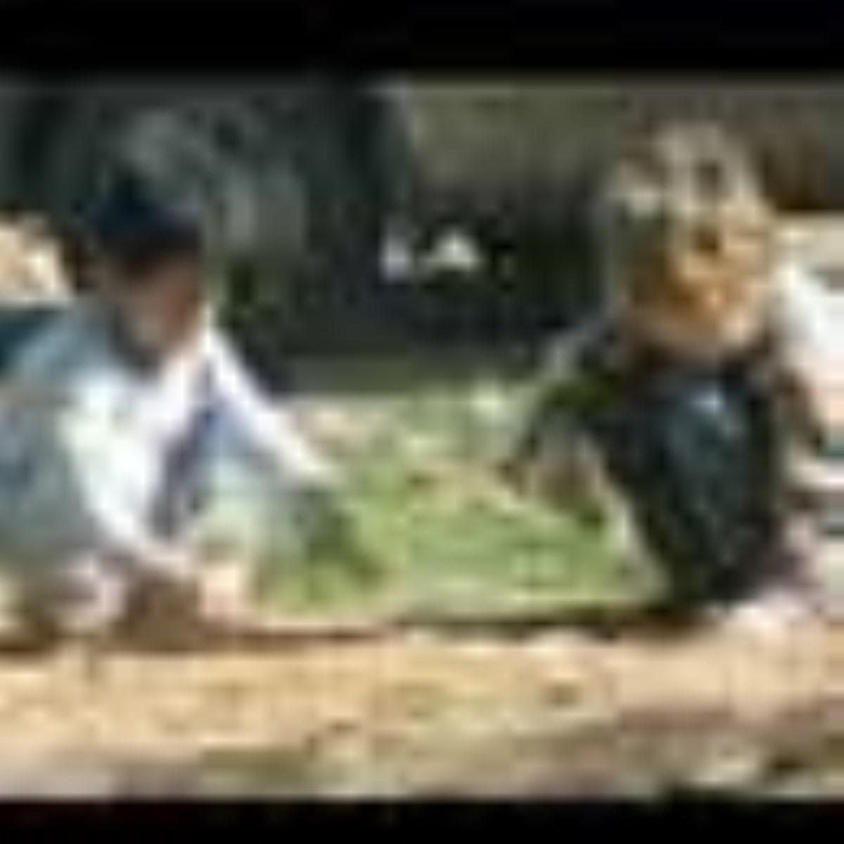 چرا «خاک بازی» برای کودکان مفید است؟