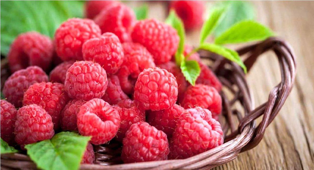 میوه تمشک چه فواید و مضراتی دارد؟