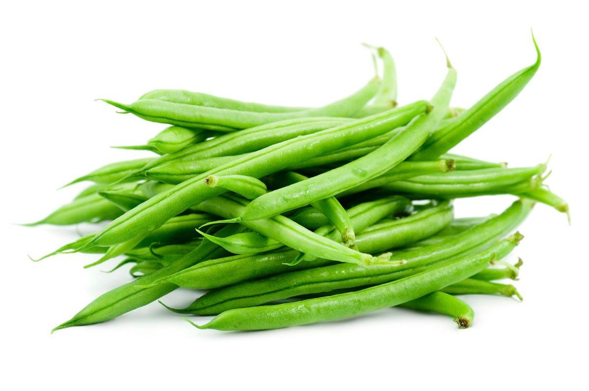 آشنایی با خواص لوبیا سبز