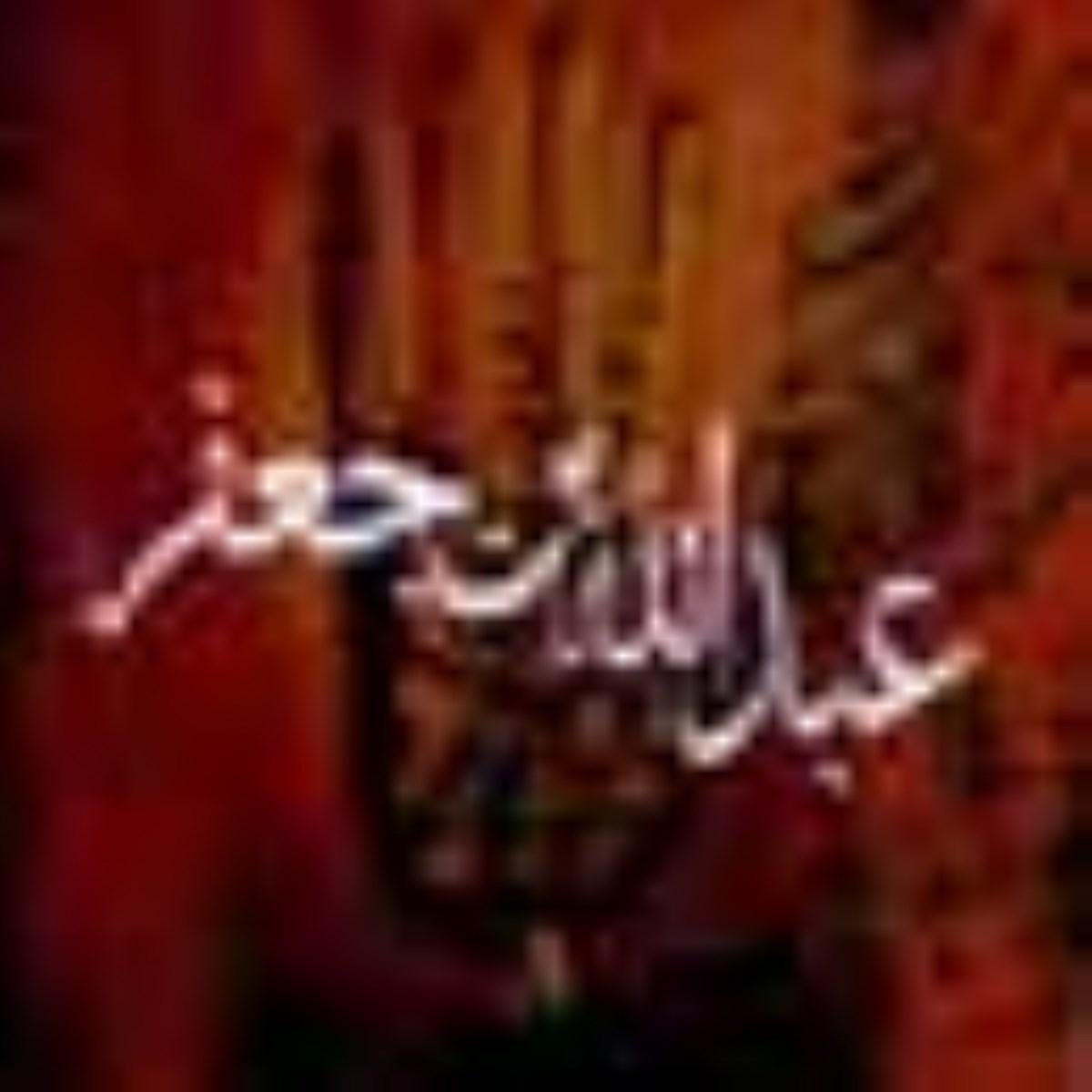 عبدالله بن جعفر طیار همسر زینب (س)