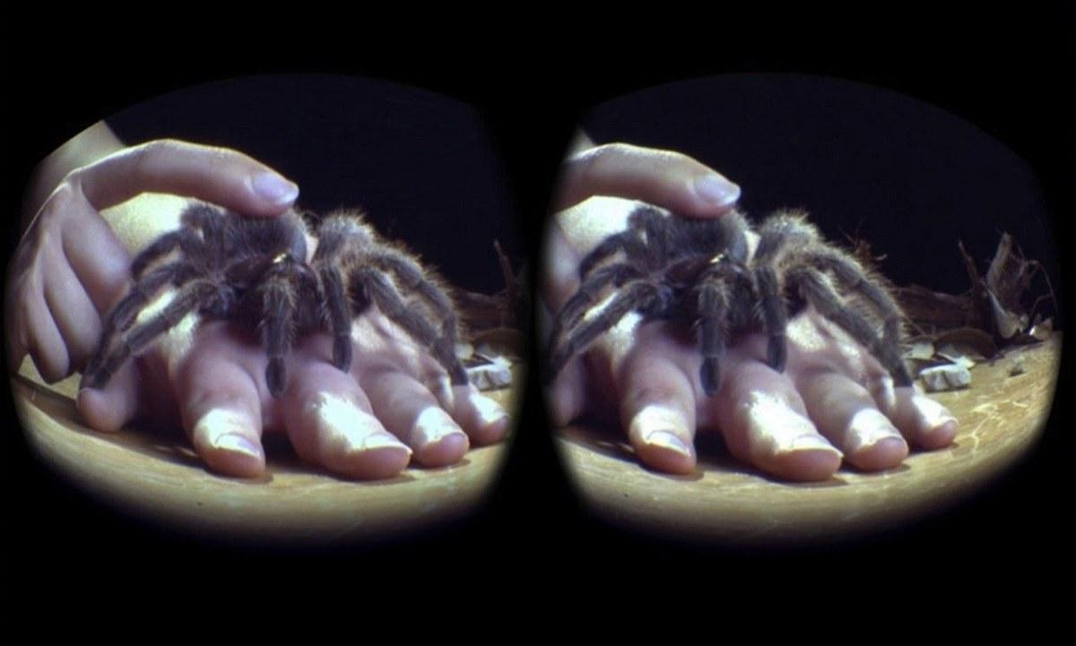 درمان عنکبوت هراسی به وسیله واقعیت مجازی