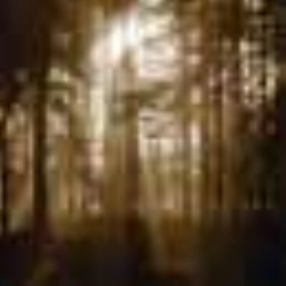 جنگلهايي كه بايد ميداشتيم