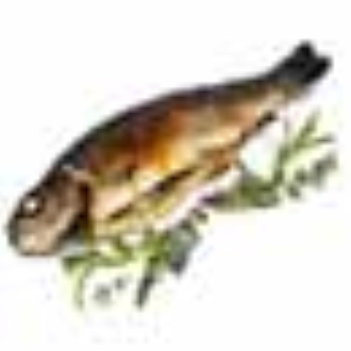 ماهي قزل آلا با سس مرزه