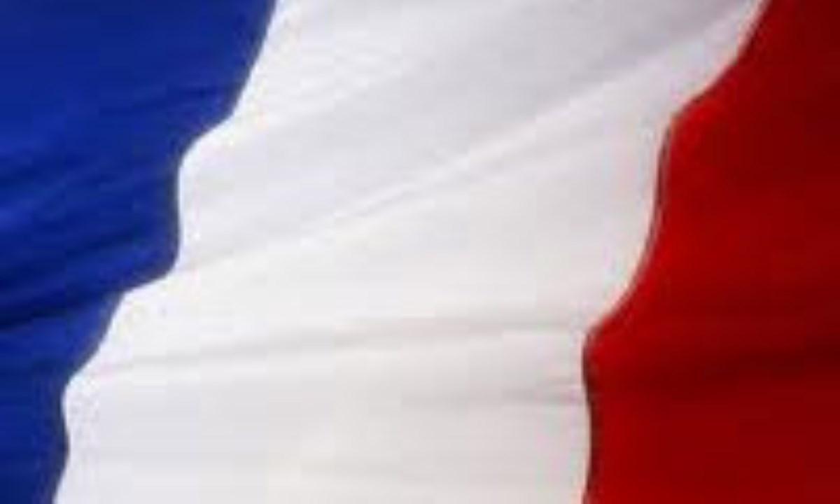 قانون اساسي فرانسه(5)