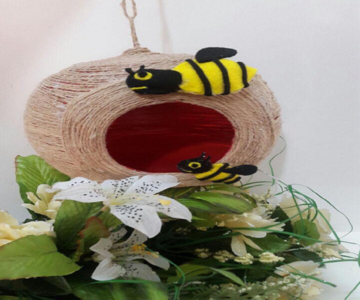 کندو برای زنبورهای ویز ویزی