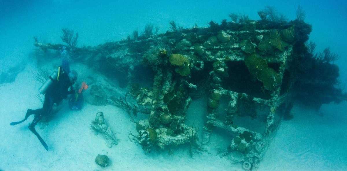 هوش مصنوعی، کشتی های غرق شده، و عالَم اقیانوس
