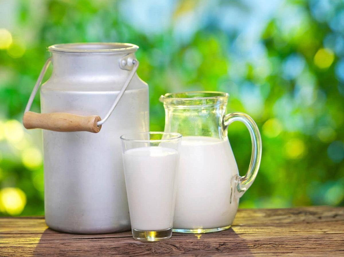 فواید شیر در سلامت بدن