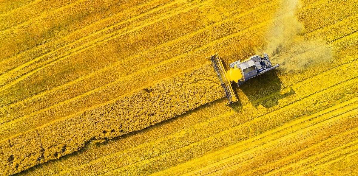 نبرد برای آینده کشاورزی: آنچه شما باید بدانید