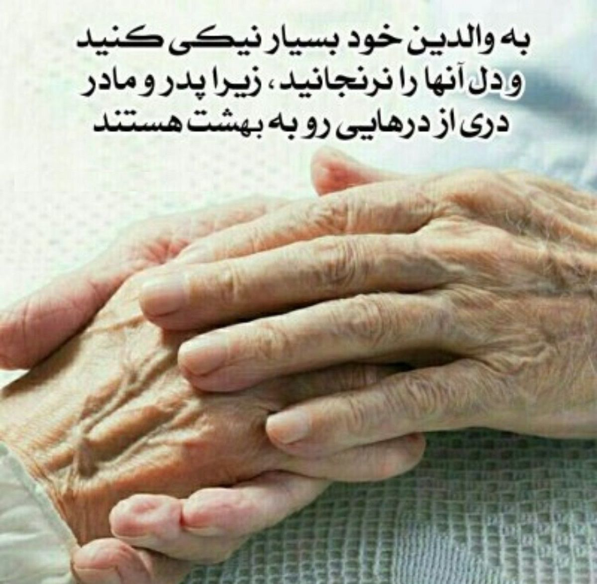 نیکی به پدر و مادر