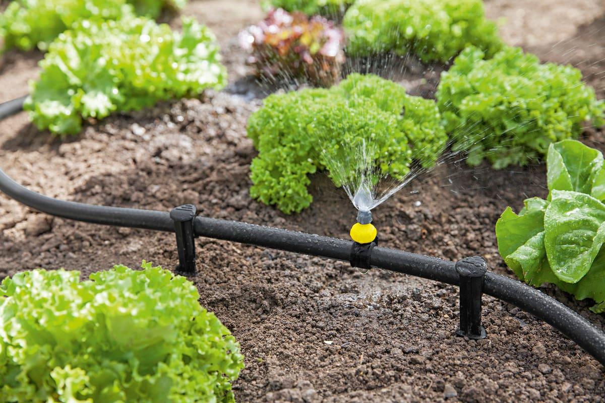 آبیاری مکانیزه چیست و به چه ابزارهای احتیاج دارد؟