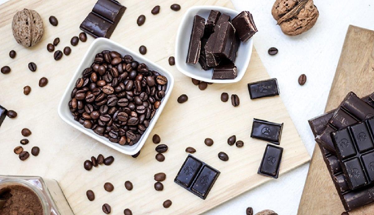 ۱۱ خاصیت شگفتانگیز پودر کاکائو برای سلامتی