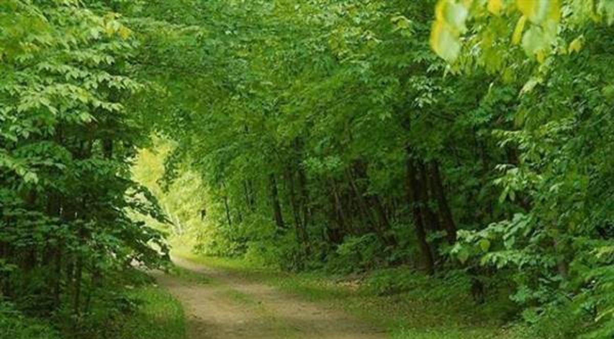 13 فروردین، روز همنشینی انسان با طبیعت