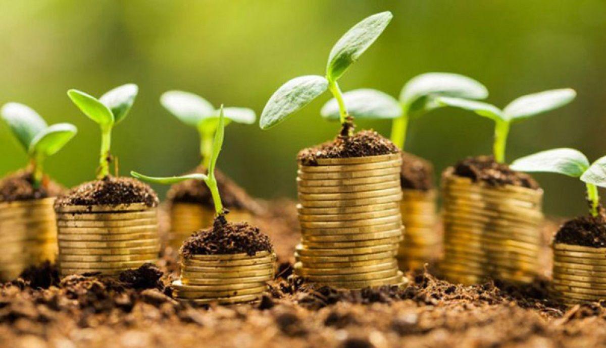 چه چیزهایی در زندگی از پول درآوردن مهمترند