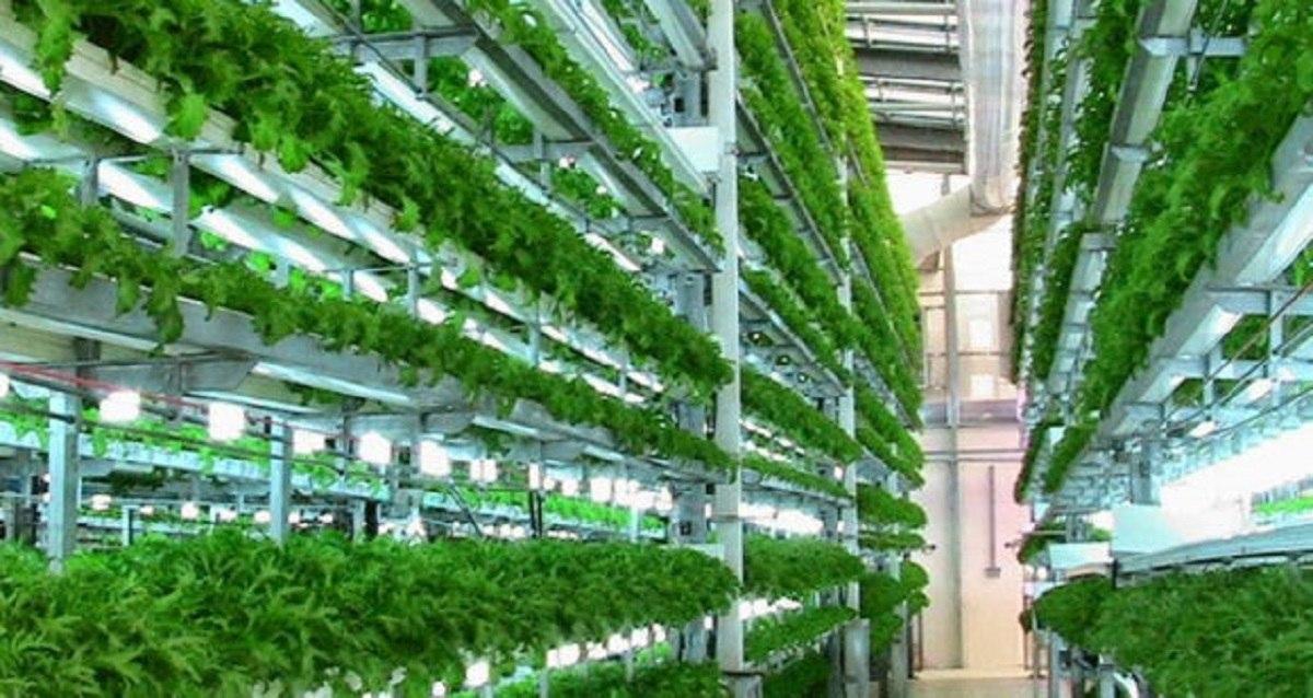 فناوری های نوظهور کشاورزی که جهان را تغییر خواهد داد