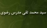 """درگذشت استاد """"سيدمحمدتقي مدرس رضوي"""" پژوهشگر (1365 ش)"""
