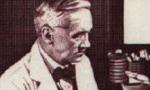 کشف پنی سیلین توسط الکساندر فلمینگ (1928م)