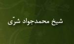 """رحلت انديشمند مبارز مسلمان، علامه """"شيخ محمدجواد شرّي""""(1373 ش)"""