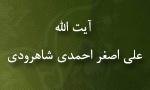 """شهادت عالم رباني آيت اللَّه """"علي اصغر احمدي شاهرودي"""" (1371 ش)"""