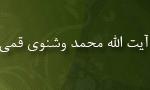 """رحلت آيت اللَّه """"محمد وشنوي قمي"""" محدث و مورخ (1376 ش)"""