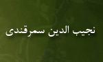 """شهادت """"نجيب الدين سمرقندی"""" دانشمند و طبيب(619 ق)"""
