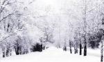 در اثر نزول برف شديد در آذربايجان غالب راه هاي آن استان مسدود شد(1340 ش)