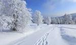 نزول برف در شهر همدان شهر را به تعطيل كشانيد و مدارس براي سه روز تعطيل شد. (1311 ش)