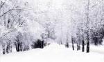در تهران و غالب شهرهاي مركزي برف زيادي باريد به طوري كه عبور و مرور قطع شد. (1309ش)
