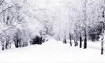 برف شديدي در تهران نازل شد كه باعث قطع كليه راه هاي اطراف شهر تهران شد. (1324 ش)
