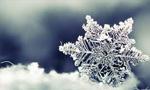 برف و سرما هجوم خود را به ایران آغاز کرد.(1344 ش)