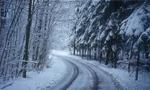 برف سنگین تهران کمر درختان را شکست و ارتباط تلفی را قطع نمود(1350ش)