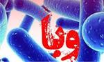 دولت رسماً شیوع بیماری وبای آلتور را در ایران و اجرای قرنطینه و کنترل رفت و آمد و لزوم تلقیح عمومی را اعلام کرد. (1344 ش)