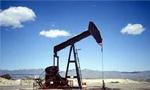 دومین چاه نفت در کوهرنگ اصفهان به نفت رسید. (1346 ش)