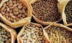 طبق تصميم هيئت وزيران صدور حبوبات، غلّات، گوشت از كشور ممنوع شد. (1321 ش)