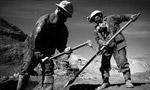 قانون سازمان بيمههاي اجتماعي کارگران به مرحله اجرا درآمد. (1334 ش)