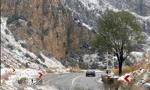 در جاده هراز در اثر تصادف دو اتوبوس 44 نفر کشته شدند(1350ش)