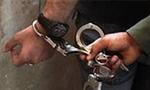 یک باند برگ و مجهز جعل کارت های آزمایش رانندگی که در آن بیست نفر فعالیّت می کردند به وسیله پلیس کشف شد(1353ش)