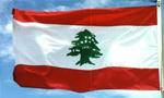 در لبنان بین چریک های فلسطینی و ارتش جنگ شدیدی درگرفت و درنتیجه عده زیادی از طرفین کشته و زخمی شدند(1352ش)