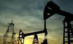 یک قرارداد نفتی بین ایران و افغانستان در کابل امضاء شد. (1356ش)