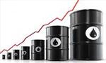 صدور نفت ایران روزانه پانصد و پنجاه هزار بشکه افزایش یافت(1354ش)