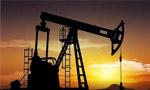 سرانجام کنسرسيوم نفت موافقت کرد (1335 ش)