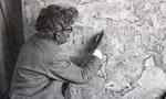 نمايشگاه آثار نقاشي ايران زير نظر استاد حسين بهزاد در تالار موزه شهر نيويورک افتتاح شد. (1336 ش)