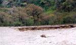 بعلت بارندگی شدید در گیلان رودخانه ها طغیان کردند و خسارات زیادی به کشاورزی وارد شد(1352ش)