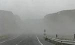 توفان شدید در تهران چند ساختمان را در هم ریخت. درختهای کهن را از ریشه کند و دو نفر را کشت و 9 نفر را مجروح کرد(1349ش)