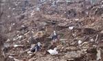 زلزله شدید تمام شهرهای مازندران را لرزاند و خسارات زیادی از خود بر جای گذاشت(1351ش)
