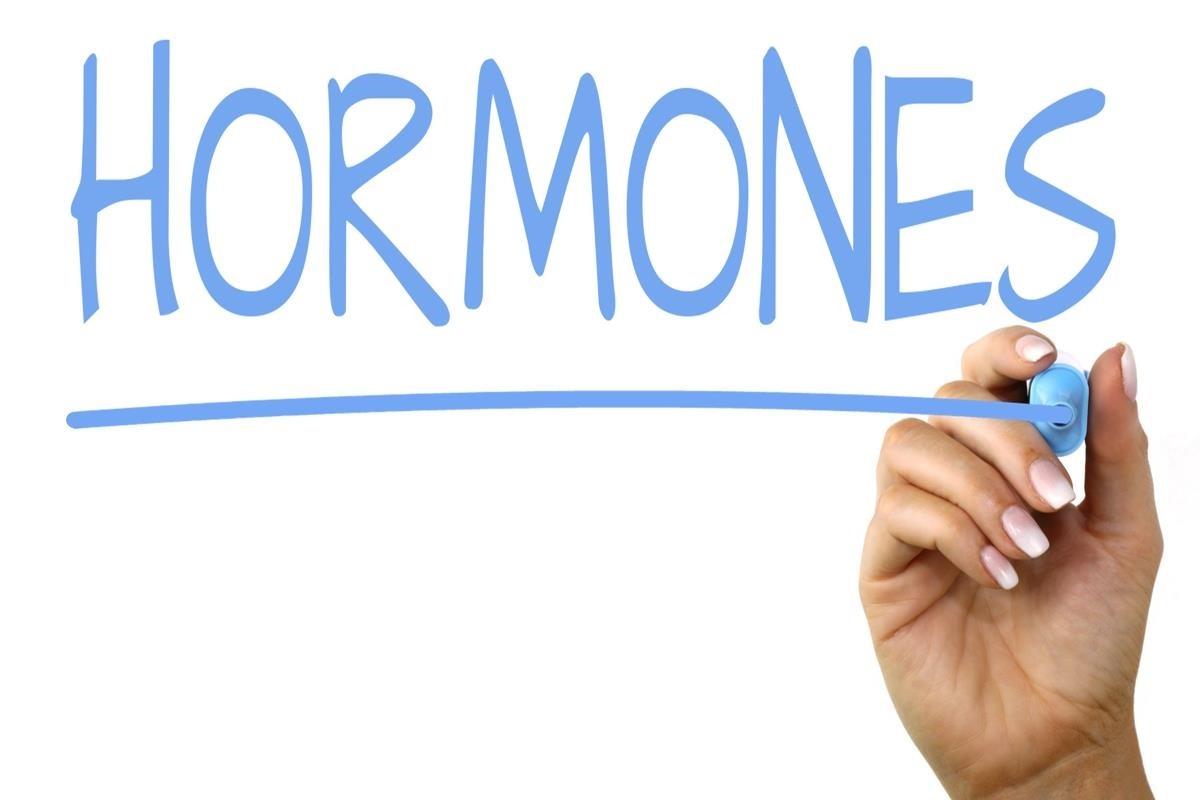 نقش هورمون ها در زندگی انسان