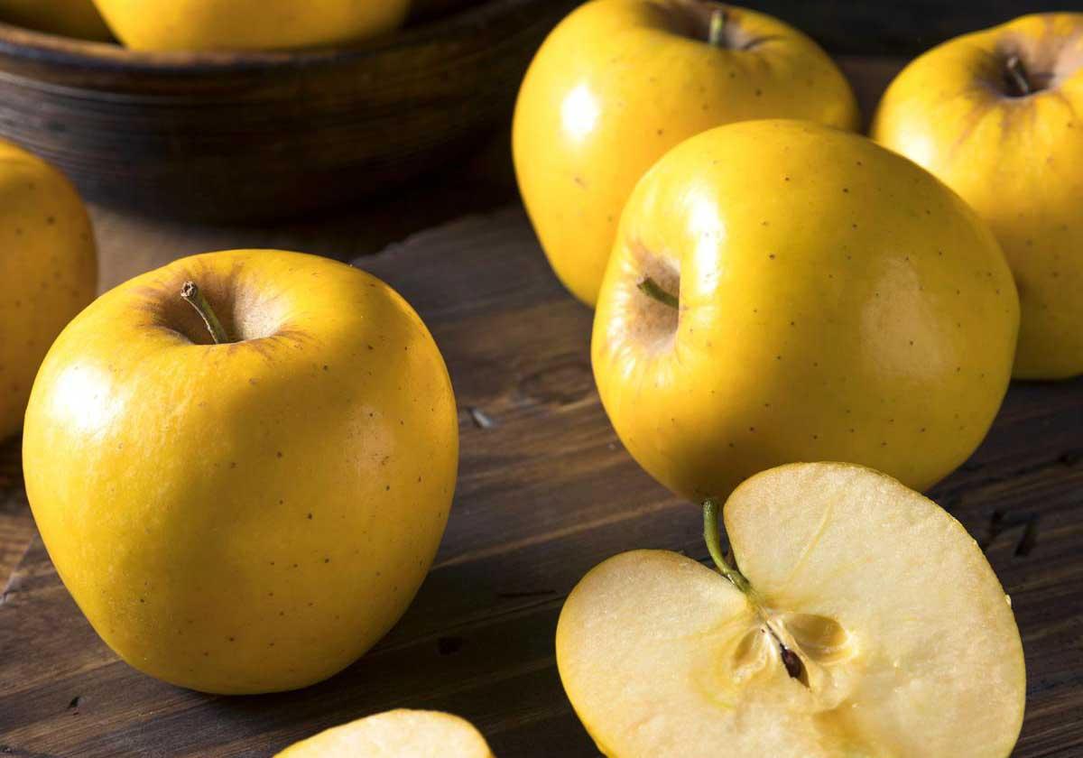 فواید سیب زرد برای سلامتی (بخش دوم)