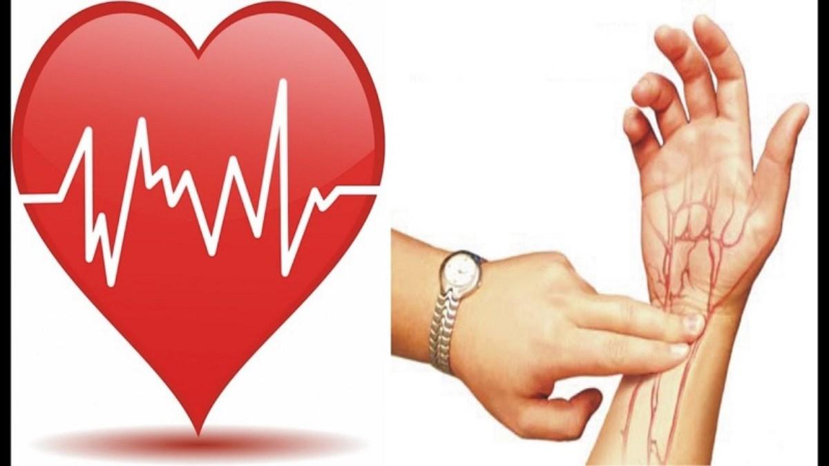 کاهش تعداد ضربان قلب با روش های طبیعی