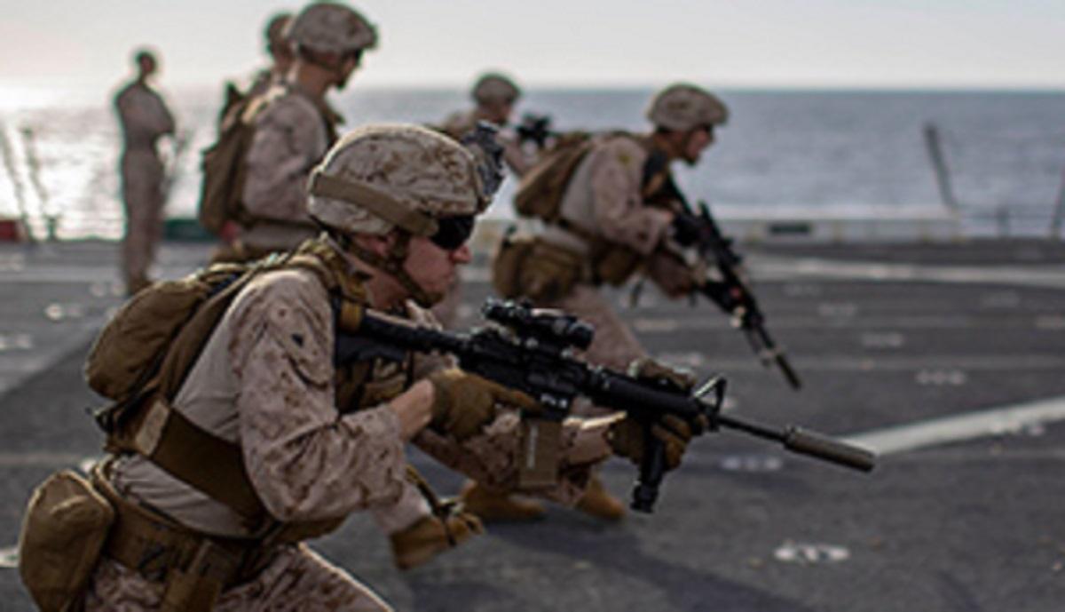 وقتی یک غاز نیروهای ویژه آمریکا را به وحشت می اندازد