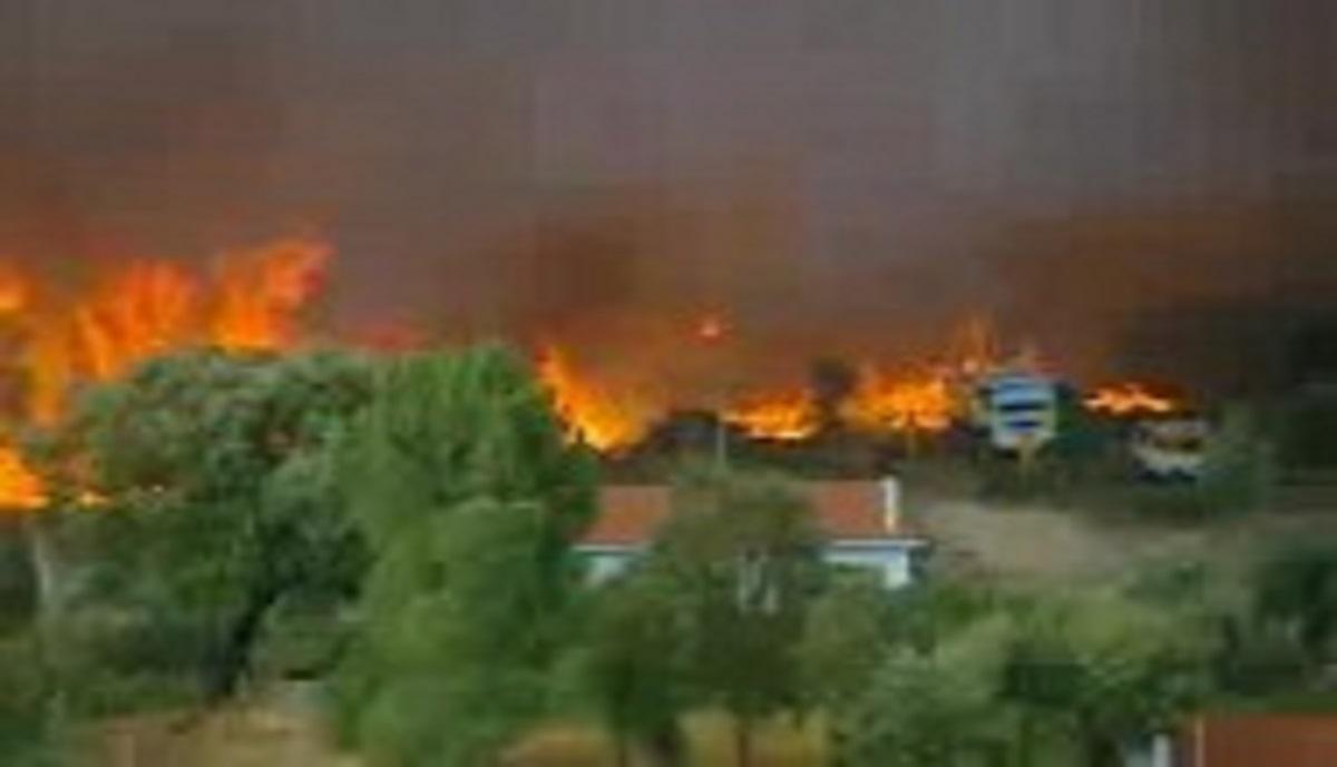 آتش سوزی در جنگل های پرتغال 9 نفر زخمی شدند.