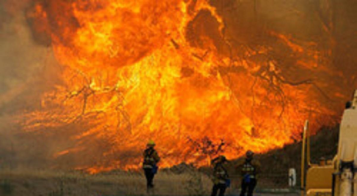آتش سوزی مهارنشدنی در جنگل های استرالیا